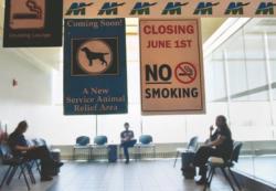 États-Unis: le fumoir d'un aéroport remplacé par un espace … pour chiens